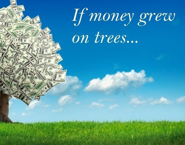 If Money Grew On Trees... - Mediregi